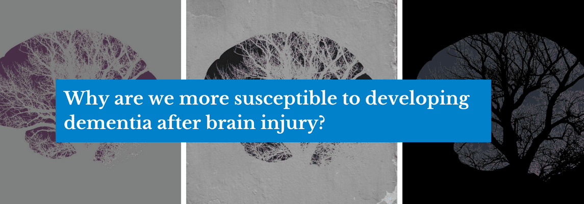 Why are we more susceptible to developing dementia after brain injury?