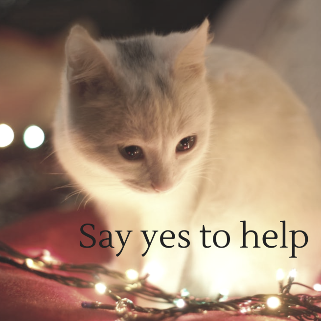 Say yes to help