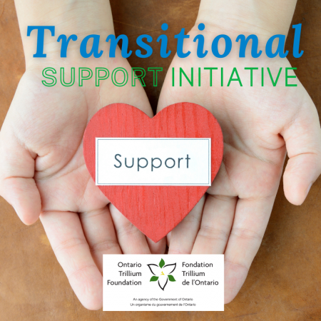 Transitional Support Initiative