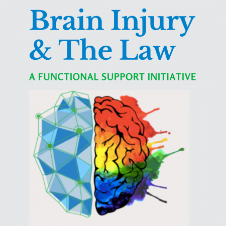 Brain Injury & The Law A functional support initiative